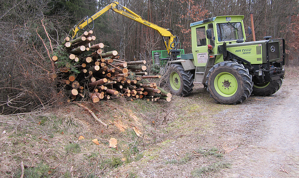 Holzbündelung