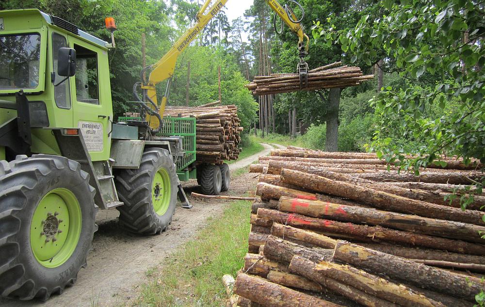 Holzbeladung